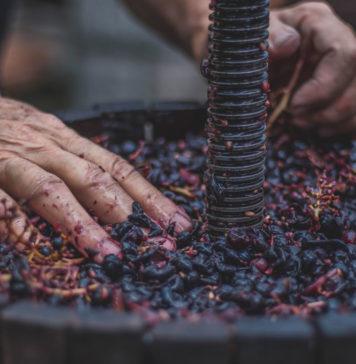 Was ist eine Wein Cuvée?