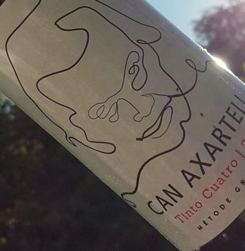 Can Axartell Tinto Cuatro 2014 im Test