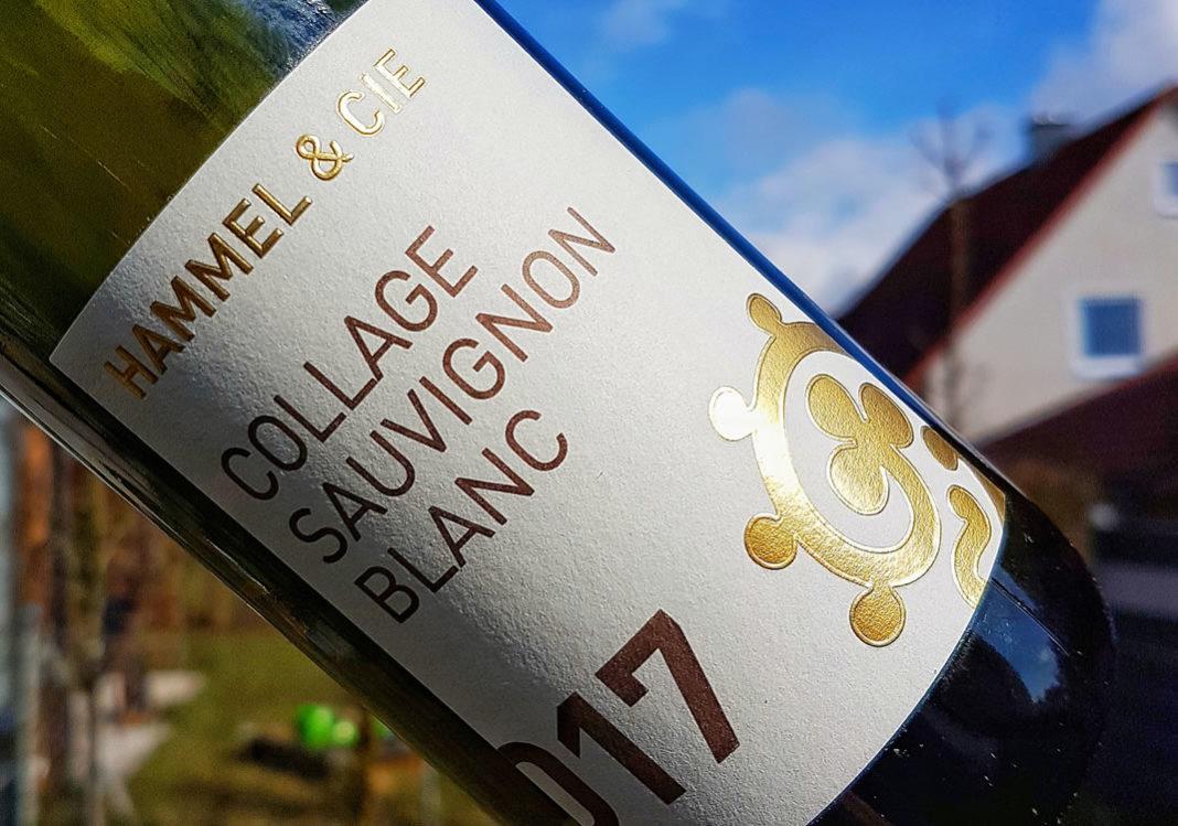 Collage Sauvignon Blanc 2017 vom Weingut Hammel im Test
