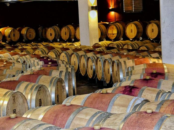 Wein Begriffe