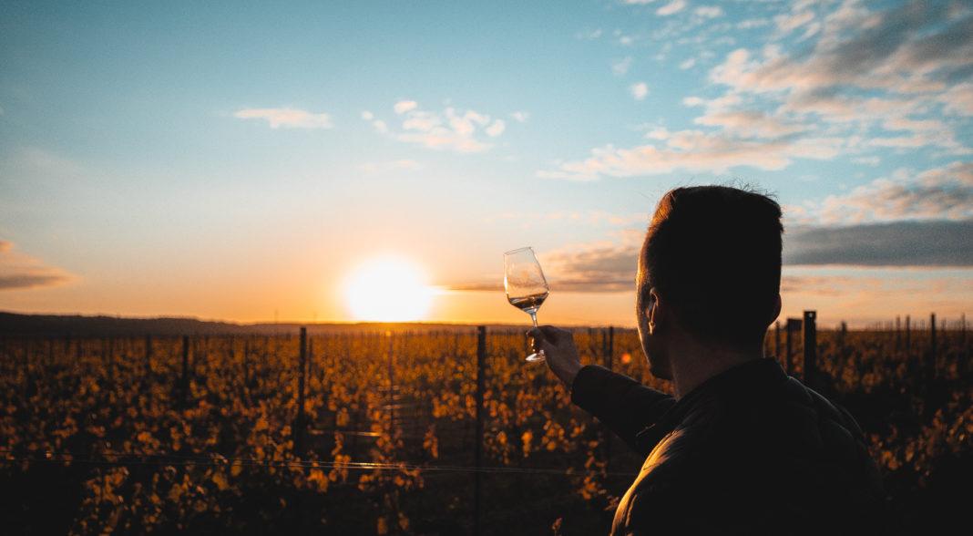 bestes Weinglas