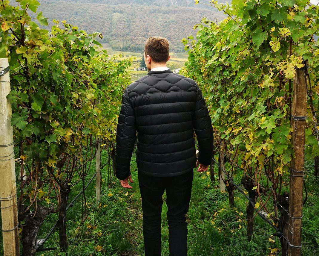Weinaromen erkennen